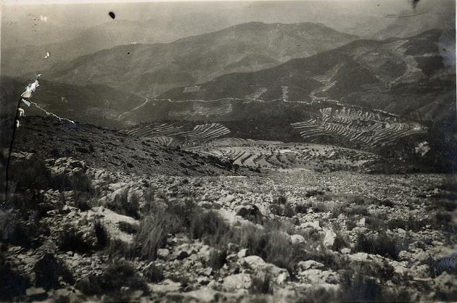 La Torreta des d'Aitana en 1943. S'aprecien els atapeïts pinars que, encara a principis del segle XIX, permetien l'obtenció de grans bigues per a la construcció. Ben a prop, encara viu el centenari Pi d'Agnon.